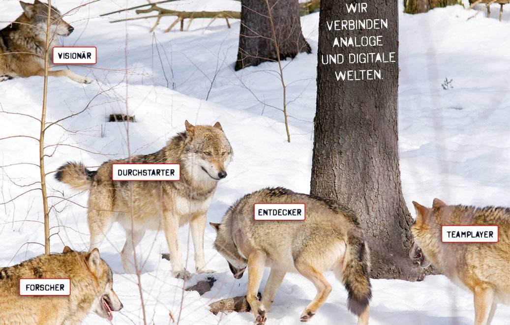 Werden Sie Wolf!